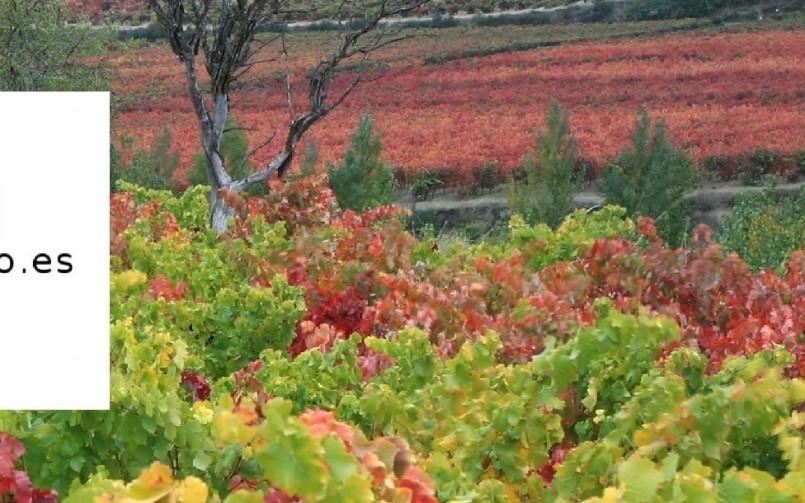 Rioja Oriental inicia el proceso de creación de su Ruta del Vino para integrase en el Club Rutas del Vino de España