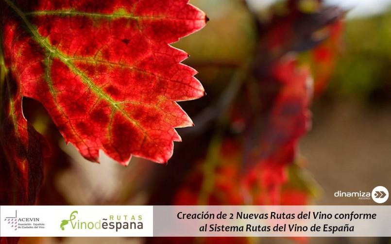 Creación de 2 Nuevas Rutas del Vino conforme al Sistema Rutas del Vino de España
