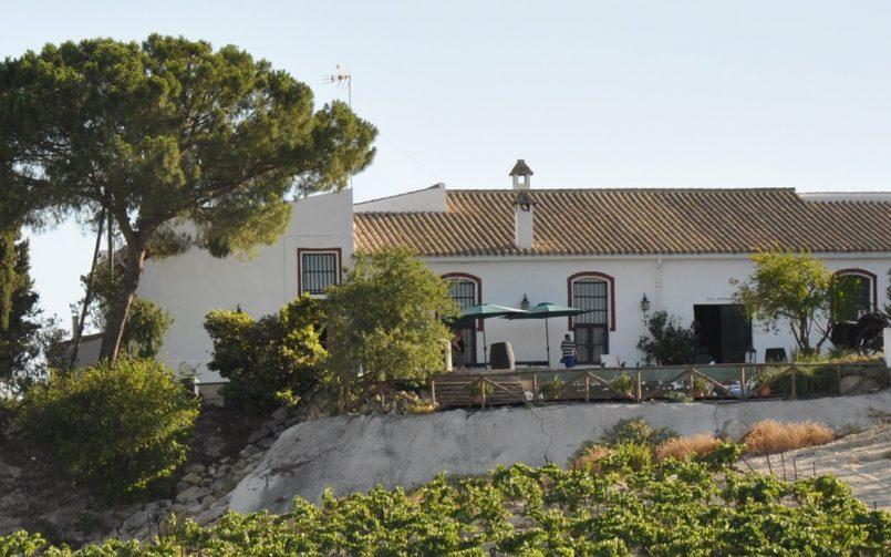 ''Los Pagos del Sherry'', una apuesta enoturística centrada en los viñedos del Marco de Jerez